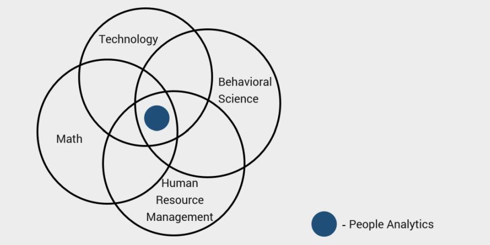 people analytics article image